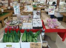 道の駅 鹿島(農産物)